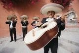 mariachis en Pamplona 683 270 443 - foto