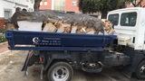 Servicio cubas escomb Marbella San Pedro - foto