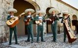 mariachis en Palencia 663.677.585 - foto