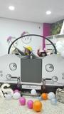 Photocall coche roll royce desde 60 euro - foto