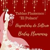 Despedidas & Bodas Flamencas - foto