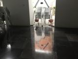 Vitrificado/Abrillantado de suelos. - foto