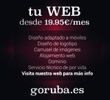 WEB PROFESIONAL - foto