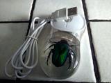 Raton ordenador - foto