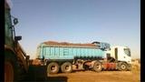 camiones estiércol, sustrato y tierras. - foto