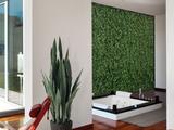 Jardines verticales castor garden - foto