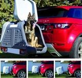 Remolque sin rueda para perros v2 - foto