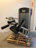 Maquinas life fitness. s. mamo. remanuf. - foto