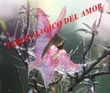 Amor magico, tarot y videncia - foto