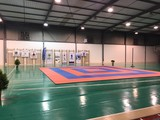 Tatamis puzzle para artes marciales - foto