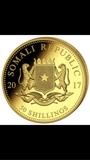 Moneda de oro - foto