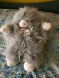 Gato de peluche gris - foto