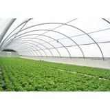 Plastico para agricultura  iberoriegos - foto