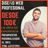 DISEÑO WEB PROFESIONAL DESDE 100EUR - foto