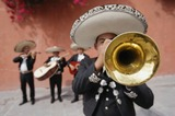 mariachis en Logroño 683.270.443 - foto