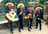 Mariachis mexicanos en cantabria - foto