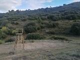 Torretas de caza - foto