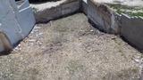 Limpiezas y Jardines - foto