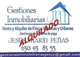 ALQUILADO PISO AVD LIBERTAD AMUEBLADO - foto