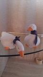 Dos patos decorativos - foto
