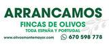 LeÑa de olivo a toda espaÑa - foto
