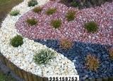 DecoraciÓn  de  jardines - foto