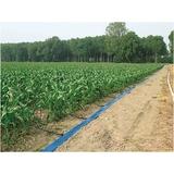 Mangueras planas agricolas iberoriegos - foto