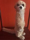 Peluche suricato - foto