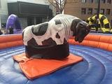 contrata un toro mecanico en tu fiesta - foto