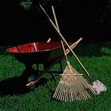 limpieza y desbroza fincas jardines - foto