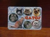 Vendo calendarios 2003 de gatos - foto