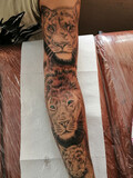 Tatuador — tatuaje desde 25 euros - foto