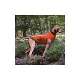 Chaleco para perros antijabalÍes - foto