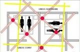 Líneas hartman y curry - foto