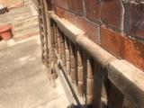 Carcoma termitas xilofagos - foto
