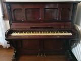 Piano orpheus - foto