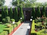 Jardineria. green world mallorca - foto