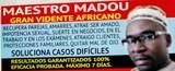 Maestro madou. tle.988009013 - foto