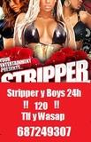 Striper,Stripper,Estriper 24h - foto