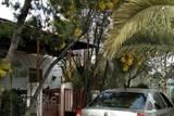 casa rural en el CENTENILLO. ENERO 2020 - foto
