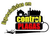 Profesionales en fumigaciones!! - foto
