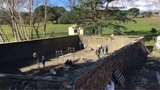Alquiler gunitadora en Badajoz - foto