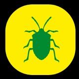 Eliminamos Cucarachas-Chinches - foto