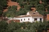 Casa rural en Sierra de Segura - foto