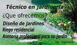 Jardinero a domicilio - foto