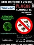 Fumigaciones: todo tipo de plagas. - foto