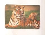 Calendario de 1991 de tigres - foto