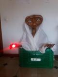 E. T El extraterrestre - foto