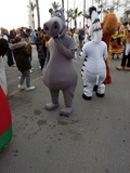 animación pasacalles desfiles cabalgatas - foto