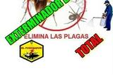 Servicios general fumigaciones!. - foto